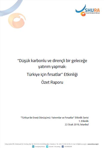 Düşük Karbonlu ve Dirençli Bir Geleceğe Yatırım Yapmak: Türkiye İçin Fırsatlar